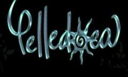 Pelledoca
