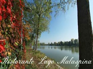 lago_malaspina_limito